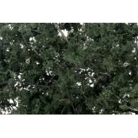 Woodland Scenics F1130 Rami con fogliame verde scuro