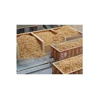 Juweela 28077 Barbabietole da zucchero (20gr.)