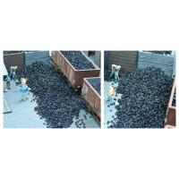 Juweela 28135 Carico di carbone (H0-TT)