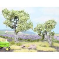 Noch 21995 Alberi di olivo H0-TT h 6 e 9 cm