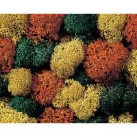 Noch 08630 Lichene naturale colori misto 35 gr.