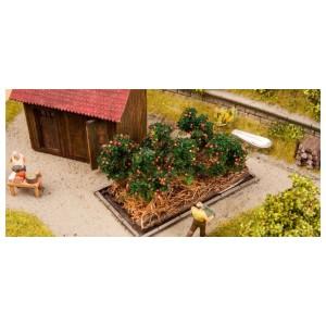 Noch 13215 Piante di pomodoro (6 piante) scala H0-TT