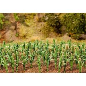 Faller 181250 Piantagione di mais per plastici (36 pezzi)
